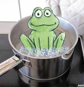 en groda som sakta låter sig kokas