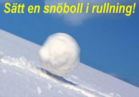 snobollrull