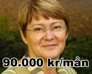 20050823 Stockholms Läns Landsting Birgitta Rydberg (fp), landstingsråd.