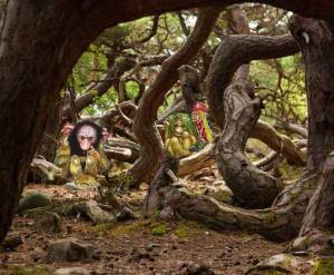 trollskog