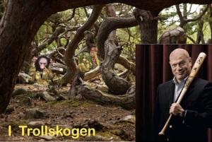 2e.trollskogen