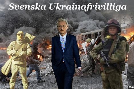 ukrainafrivilliga