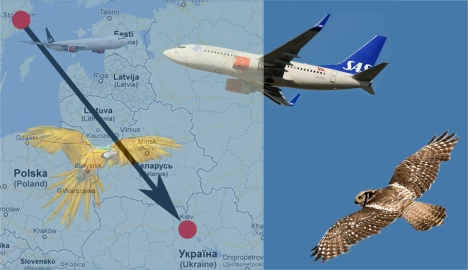 flygare