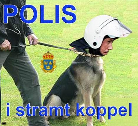 poliskoppel