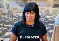 13.idiot