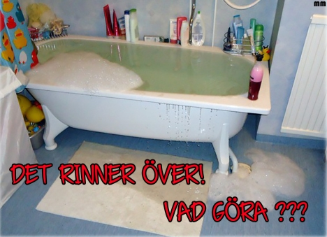 rinnerover